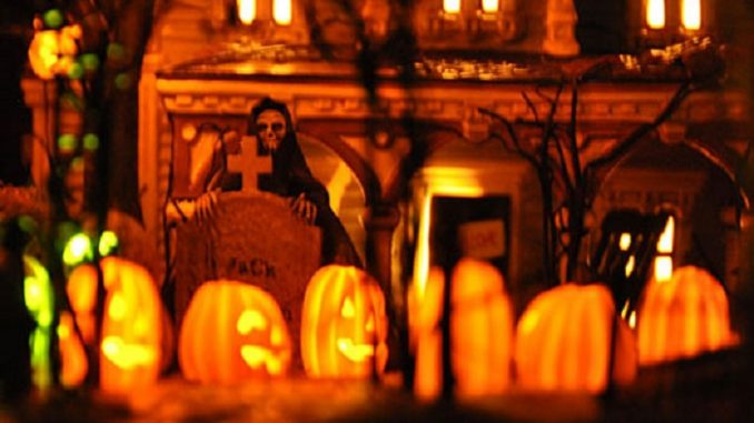 Halloween-Decoration-Martha-Stewart-Inspired-2
