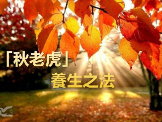 image_meitu_2