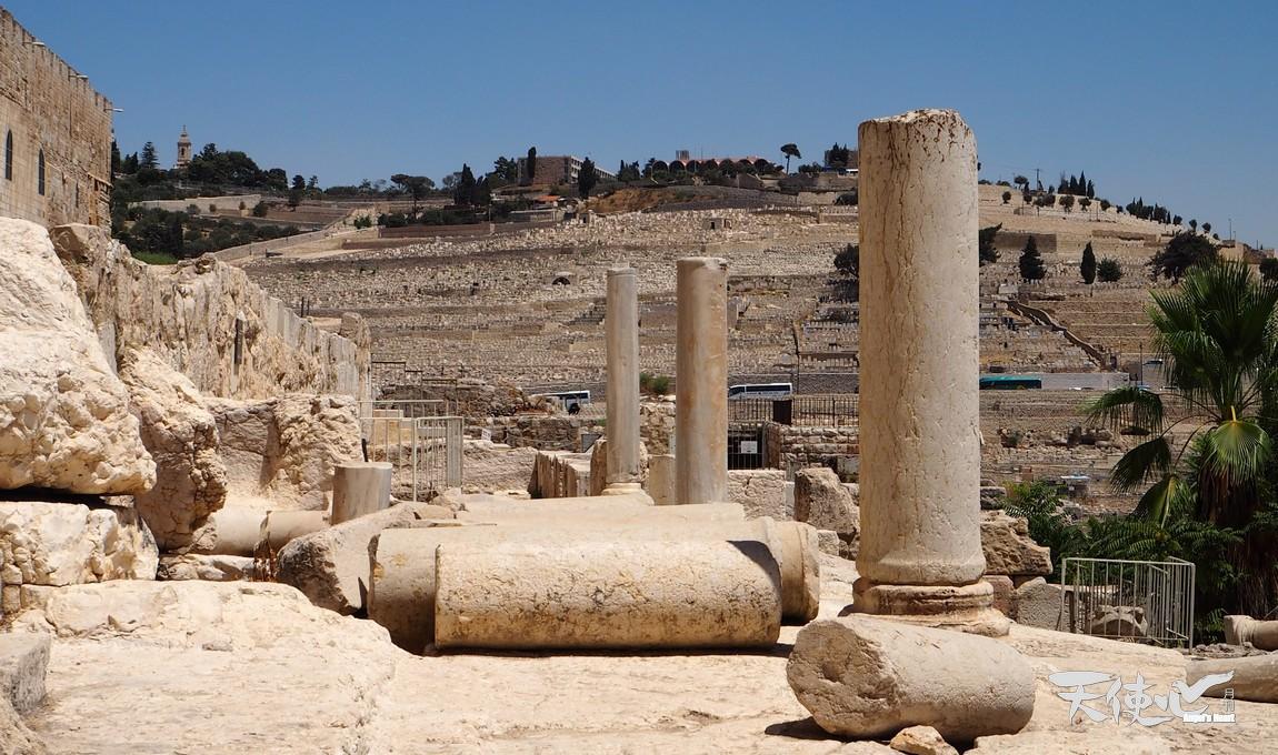 聖殿山四邊全是考古的重要寶物,動不動都上千年的古物