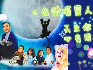 cat_banner_001_meitu_3