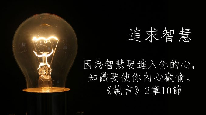 s_lamp copy